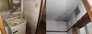 長野市 内装塗装前