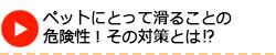 長野市でペットにとって滑ることの危険性その対策とは