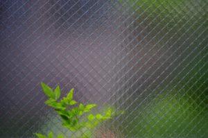 網入りガラスが熱割れを引き起こす