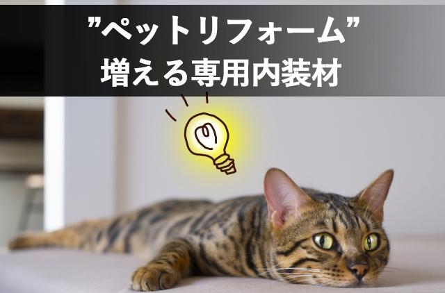 長野市ペットリフォーム業者