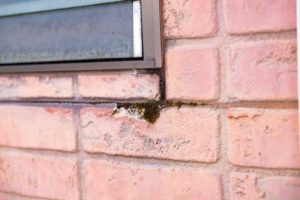 長野市 外壁サイディングボードの凍害