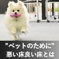 長野市ペットリフォーム